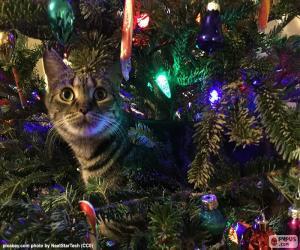 Puzle Gato e a árvore de Natal