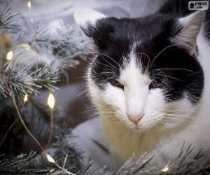 Puzle Gato no Natal