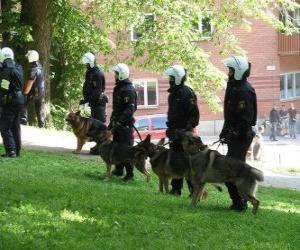 Puzle gentes da polícia de choque com cães