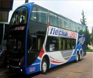 Puzle Grande barra-ônibus