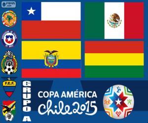 Puzle Grupo A, Copa América de 2015