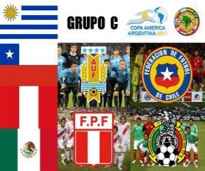 Puzle Grupo C, Argentina 2011