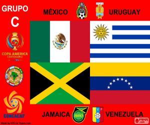 Puzle Grupo C, Copa América Centenario