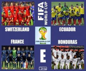 Puzle Grupo E, Brasil 2014
