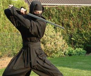 Puzle Guerreiro ninja e a luta com o katana