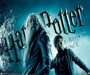 Puzle Harry Potter and the Half-Blood Prince