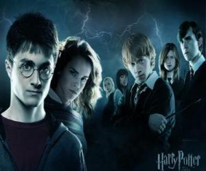 Puzle Harry Potter com os seus amigos