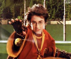 Puzle Harry Potter jogando uma bola