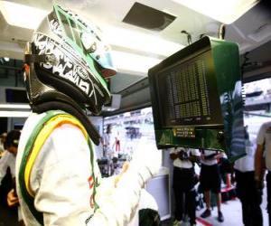 Puzle Heikki Kovalainen - Lotus - Sepang 2010