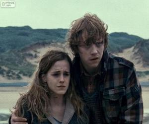 Puzle Hermione Granger e Ron Weasle