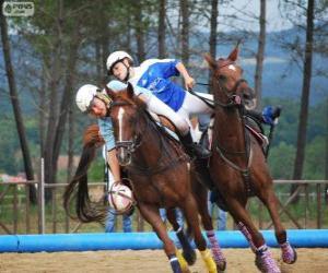 Puzle Horseball