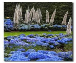 Puzle Hortênsias e flores exóticas