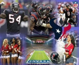 Puzle Houston Texans