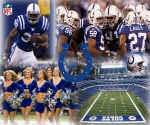 Puzle Indianapolis Colts