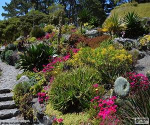 Puzle Jardim botânico
