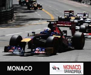 Puzle Jean-Eric Vergne - Toro Rosso - Monte Carlo 2013