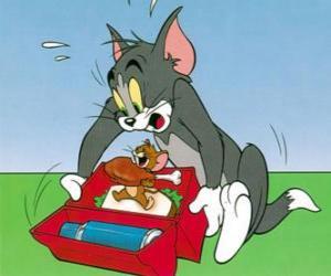 Puzle Jerry come piquenique de Tom