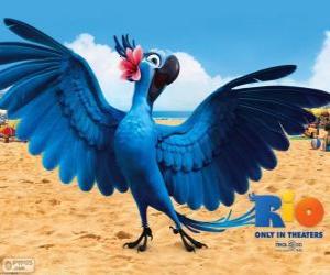 Puzle Jewel é uma bela arara fêmea no filme Rio