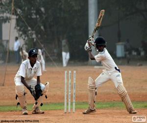 Puzle Jogadores de Críquete