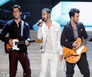 Puzle Jonas Brothers 2013