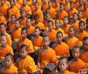 Puzle Jovens monges budista