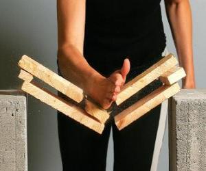 Puzle Karateca quebrando uma peça com um golpe com a mão
