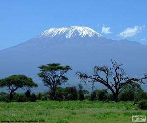 Puzle Kilimanjaro, Tanzânia