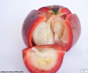 Puzle Kokam fruta