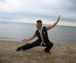 Puzle Kung Fu
