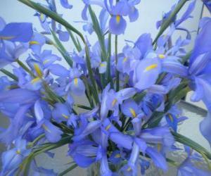 Puzle Lírios Bouquet