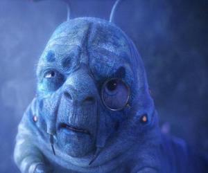 Puzle Lagarta azul
