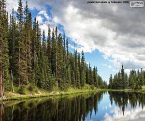 Puzle Lago Irene, Estados Unidos