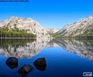 Puzle Lago Tenaya, Estados Unidos