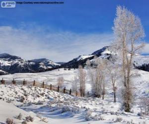 Puzle Lamar Valley, Parque Nacional de Yellowstone, Wyoming, Estados Unidos