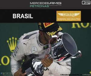 Puzle Lewis Hamilton, GP do Brasil 2016
