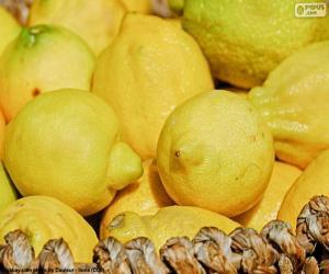 Puzle Limões
