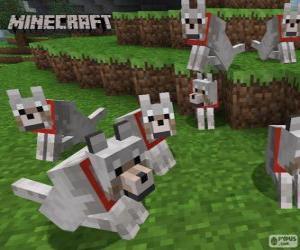 Puzle Lobos de Minecraft