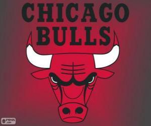 Puzle Logo Chicago Bulls, time da NBA. Divisão Central,ConferênciaLeste