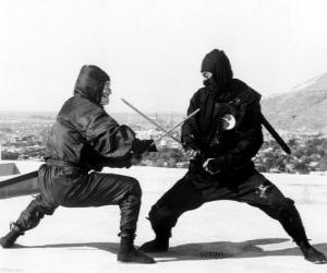 Puzle Luta entre dois ninjas