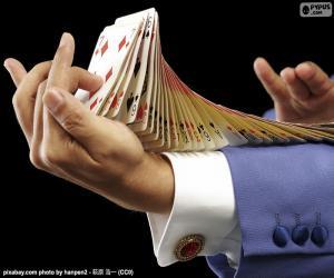Puzle Mágico, truque do cartão