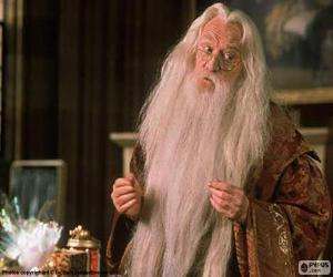 Puzle Mago, bruxo ou feiticeiro