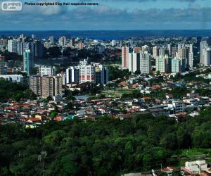 Puzle Manaus, Brasil