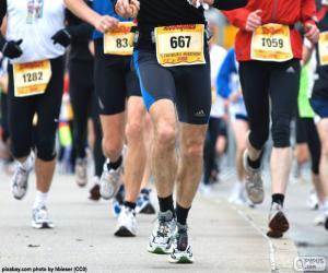 Puzle Maratona