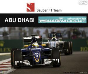 Puzle Marcus Ericsson, GP Abu Dhabi 2016