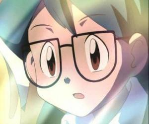 Puzle Max aparece como uma companheira de Ash Ketchum, é também o irmão mais novo de maio e se juntou ao grupo de Ash, May e Brock criador Pokémon.