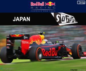 Puzle Max Verstappen, GP do Japão 2016