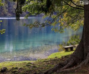 Puzle Meditação no lago