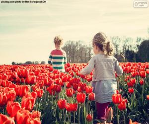 Puzle Meninas entre tulipas