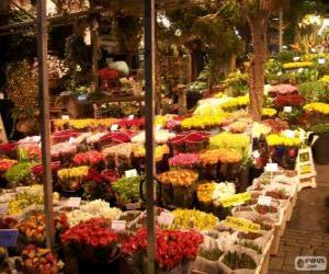 Puzle Mercado de flores, Amesterdão, Países Baixos