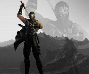 Puzle Mestre ninja